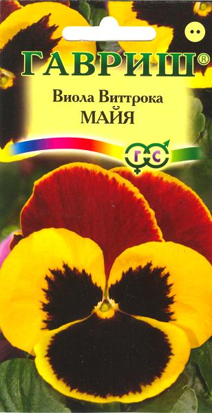 viola-mayya