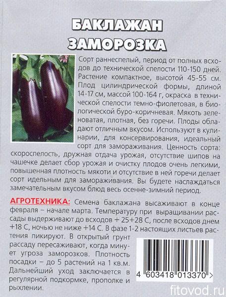 баклажан заморозка1