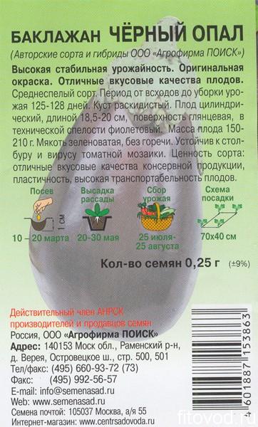 баклажан черный опал1