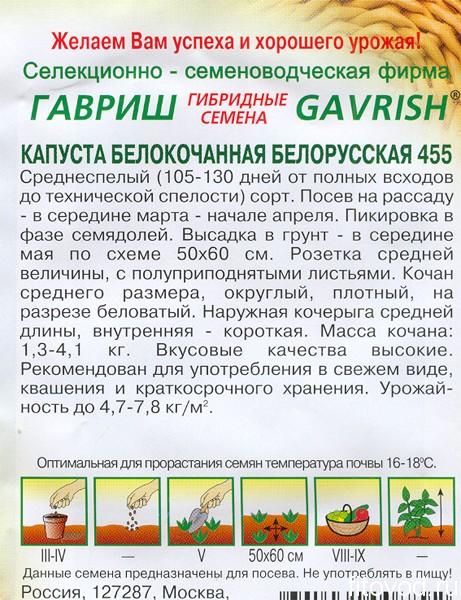 капуста беларусская1