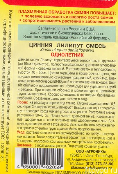 цинния1