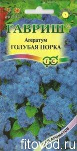 агератум голубой
