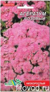 агератум розовый